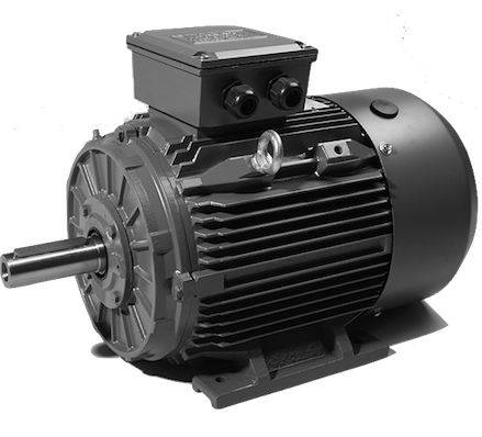 Three Phase Electric Motor Techtop